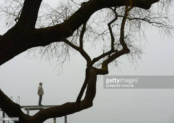 A pedestrian enjoys his walk at a rack near the lake Ammersee in Herrsching southern Germany during foggy winter weather and temperatures by the...