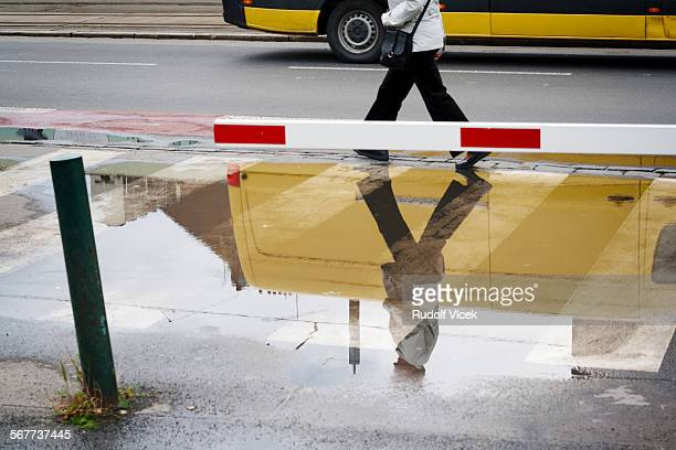 Pedestrian reflection in puddle