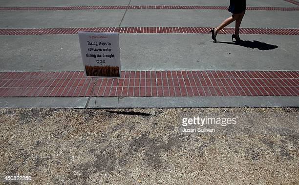 A pedestrian walks by a sign that is posted on sections of dead lawn explaining reduced and restricted watering at the California State Capitol on...
