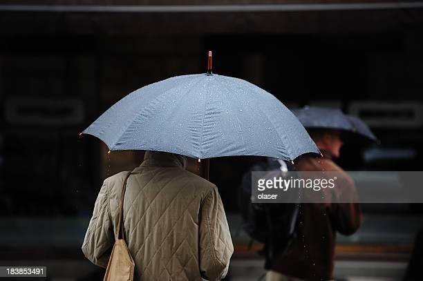 Pedone con ombrello su zebra crossing. Piove