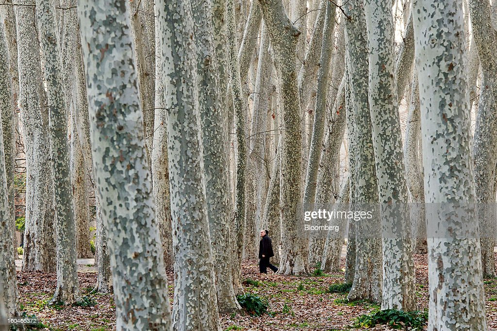 Pedestrians walk among tall trees in a city park in Girona, Spain, on Thursday, Jan. 31, 2013. Spain's recession deepened more than economists forecast in the fourth quarter as the government's struggle to rein in the euro region's second-largest budget deficit weighed on domestic demand. Photographer: David Ramos/Bloomberg via Getty Images
