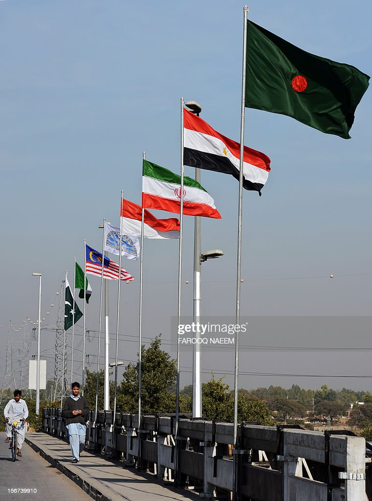Pedestrians walk past flags of D-8 member nations ahead of the D8 summit in Islamabad on November 20, 2012. The biannual summit, established in 1997, will focus on economic challenges, development and peace in the region and among member countries. AFP PHOTO/Farooq NAEEM
