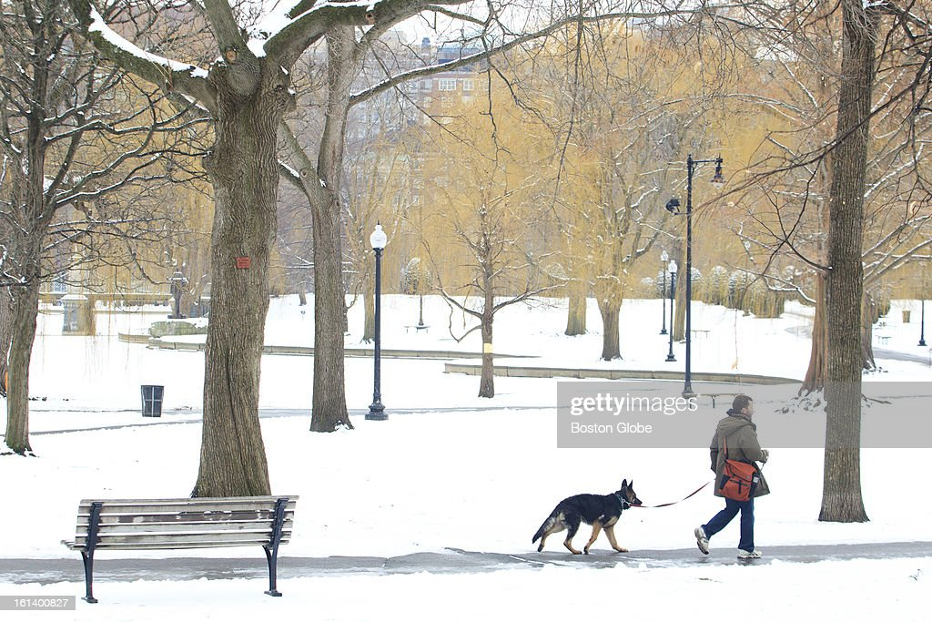 Pedestrians walk through a snowy Boston Public Garden on Tuesday afternoon, January 29, 2013, but forecasters expect temperatures around 50 degrees by Wednesday.