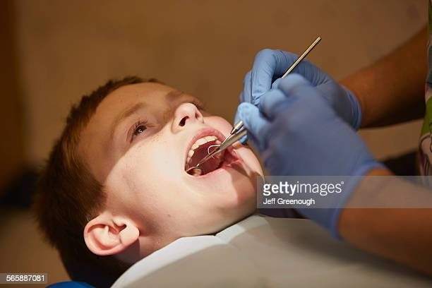 Pediatric dentist examining teeth of patient