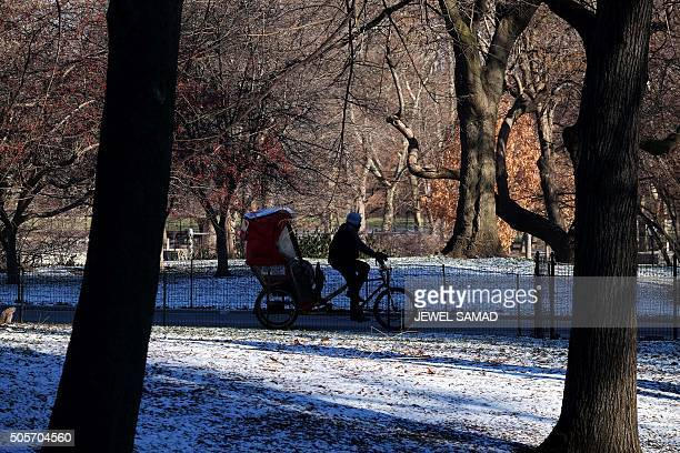 A pedicab driver steers along the Central Park with his riders during a cold windy morning in New York on January 19 2016 / AFP / JEWEL SAMAD