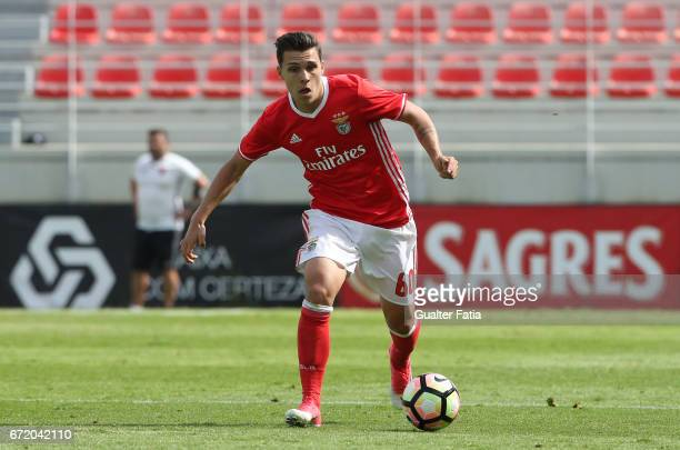 Pedro Amaral of SL Benfica B in action during the Segunda Liga match between SL Benfica B and FC Porto B at Caixa Futebol Campus on April 23 2017 in...