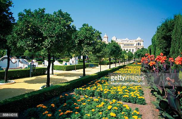 Pedro Luis Alson Gardens in front of Guild Hall, Malaga, Andalusia, Spain