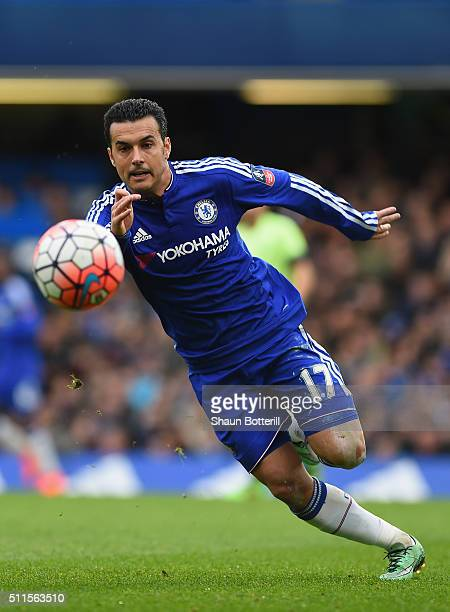 Pedro of Chelsea in action during the Emirates FA Cup Fifth Round match between Chelsea and Manchester City at Stamford Bridge on February 21 2016 in...
