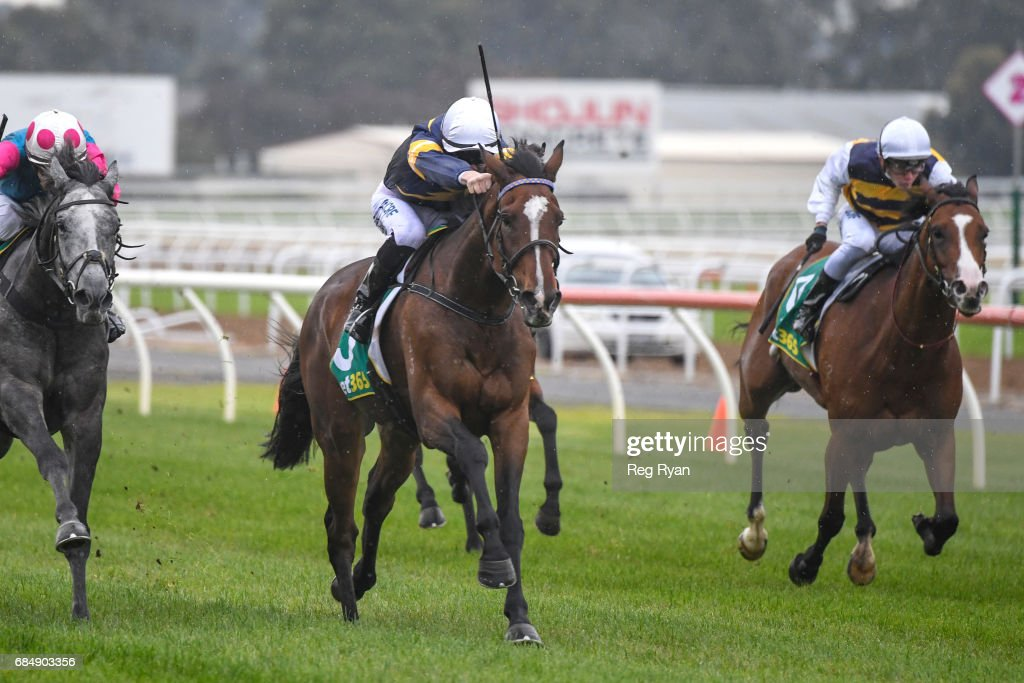 Pedro Ximenez ridden by Patrick Moloney wins the Growlers Restaurant SV Maiden Plate at Geelong Racecourse on May 19, 2017 in Geelong, Australia.