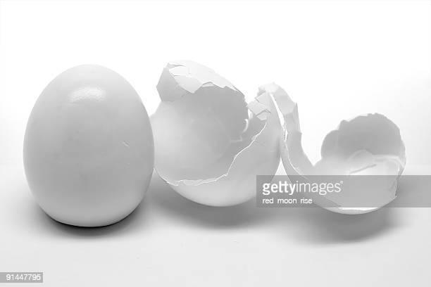 Peladas huevo con carcasa