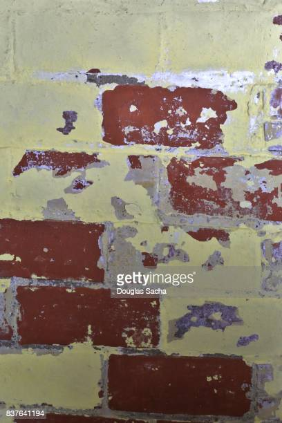 lead paint on wall toxic mold stock photos and pictures getty images