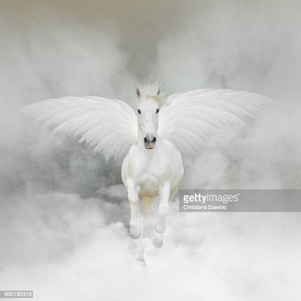 Pegasus flying in the clouds
