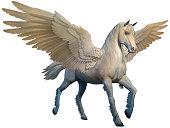 Pegasus 3D illustration