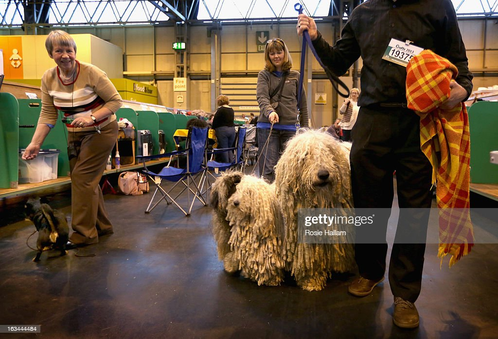 Peggy and Furge, Hungarian Puli and Agatha, a Hungarian Komondor with their owners Isobel and Kim Sears get ready to show during the final day at Crufts Dog Show on March 10, 2013 in Birmingham, England. During this year's four-day competition over 22,000 dogs and their owners will vie for a variety of accolades but ultimately seeking the coveted 'Best In Show'.