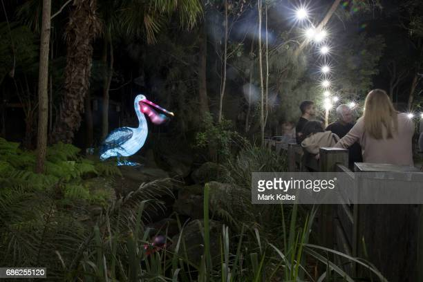 A pelican installation one of the giant illuminated animal sculptures on display at Taronga Zoo is seen during a media call ahead of Vivid Sydney at...