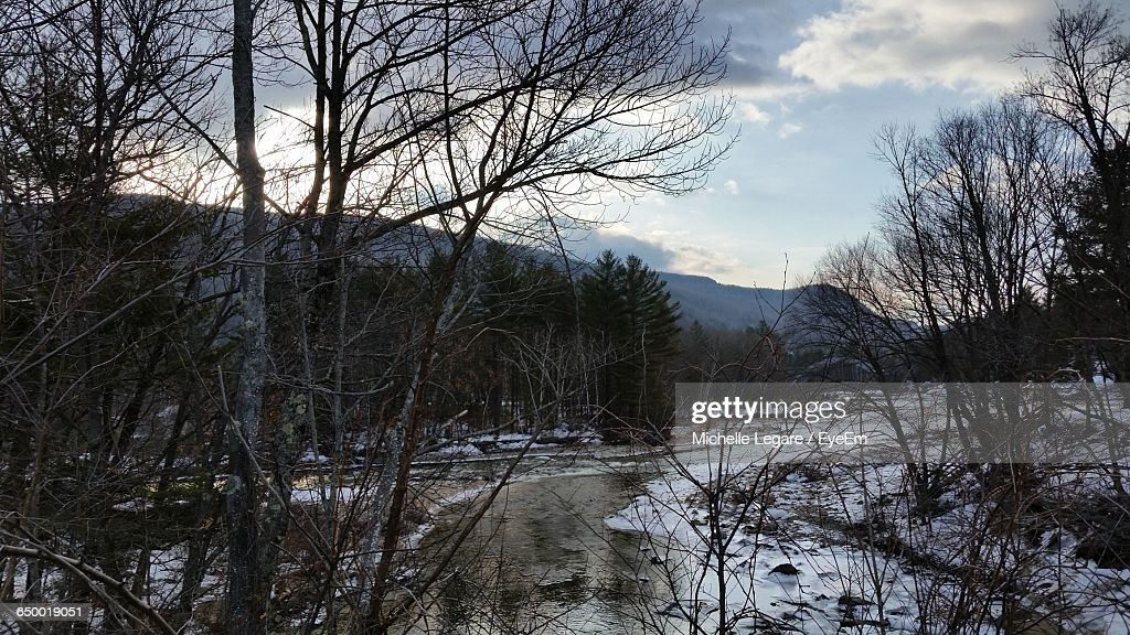 Pemigewasset River By Bare Trees At White Mountain National Forest