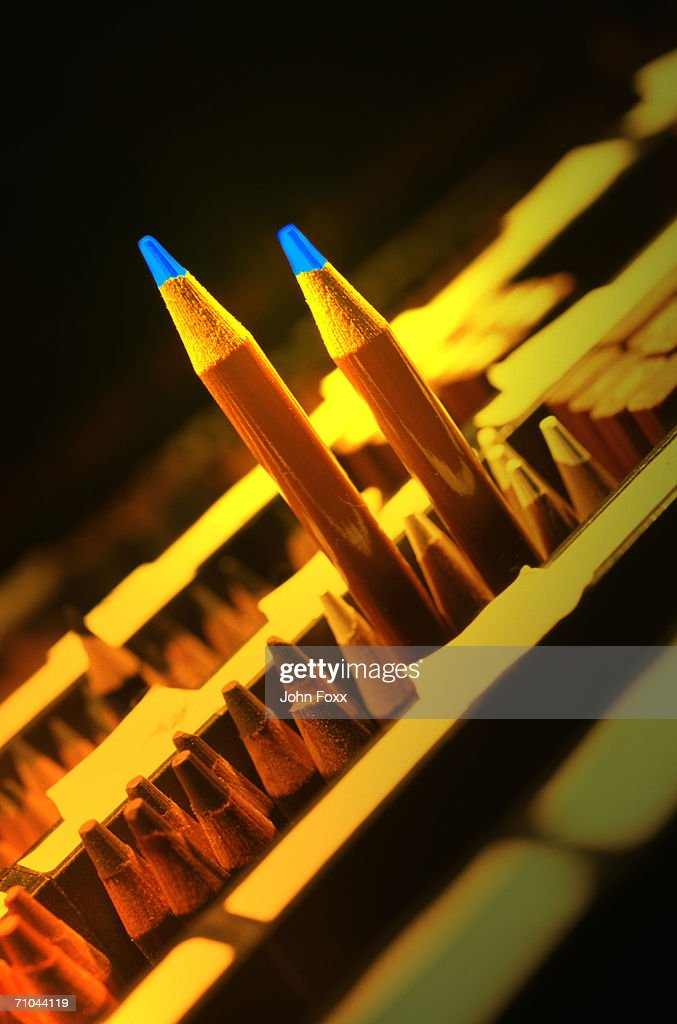 pencils : Stock Photo