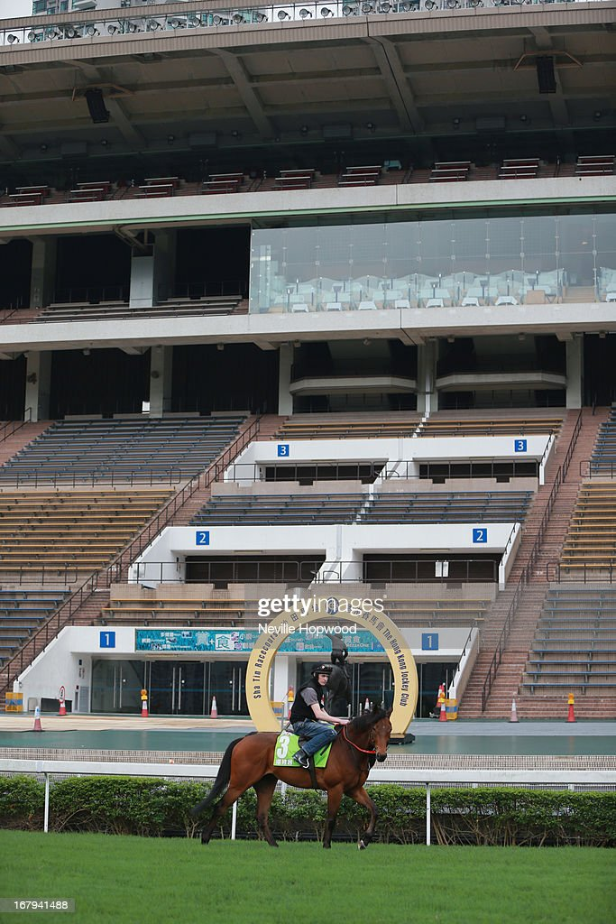 Penitent during a trackwork session at Sha Tin racecourse on May 3, 2013, ahead of the Champions Mile this Sunday in Hong Kong, Hong Kong.