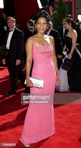 Penny Johnson Jerald during The 54th Annual Primetime Emmy Awards Arrivals at The Shrine Auditorium in Los Angeles California United States