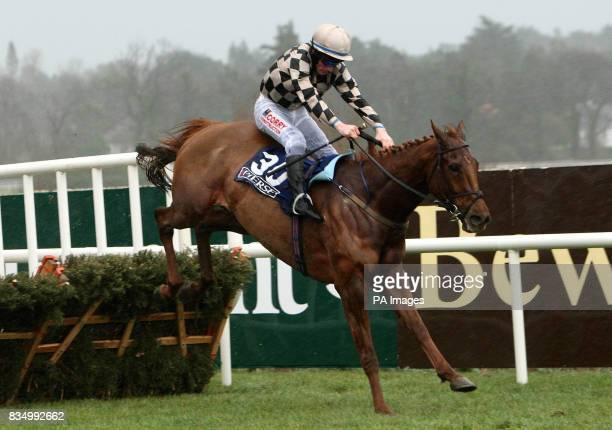 Penny's Bill and jockey Sean Flanagan clear the last on the way to winning the Pierse Hurdle during the Pierse Hurdle Day at Leopardstown Racecourse...