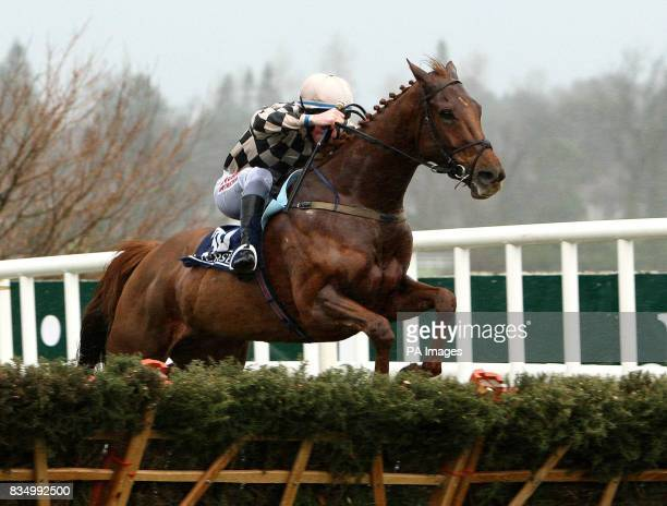 Penny's Bill ridden by Seanie Flanagan clears the last on the way to winning the Pierse Hurdle during the Pierse Hurdle Day at Leopardstown...