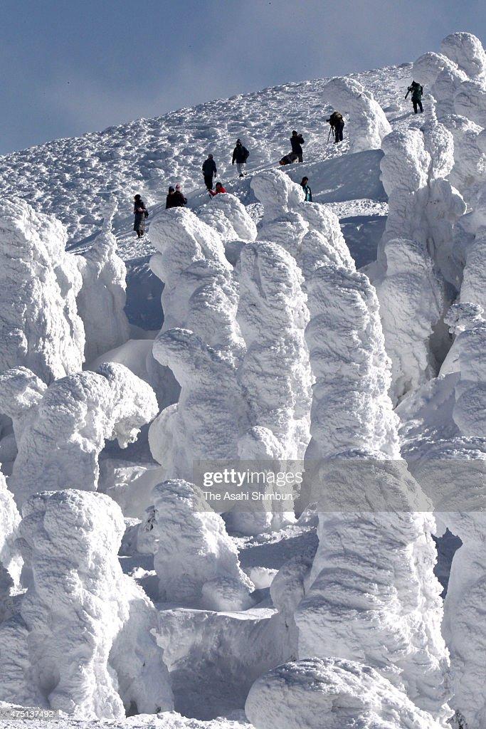 Peole enjoy soft rime formations at Mount Zao on February 8 2011 in Yamagata Japan
