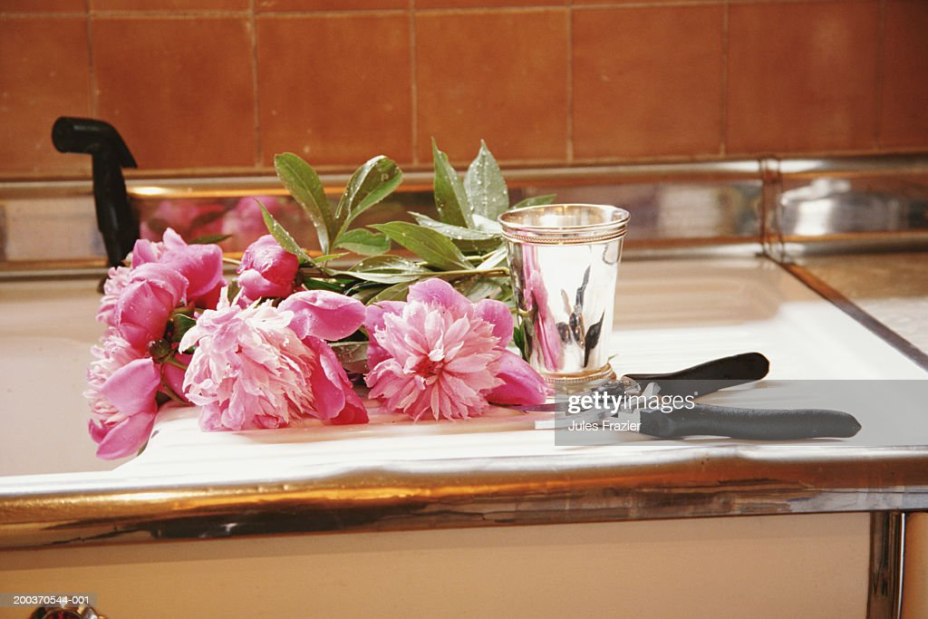 Peonies, vase and pruning shears beside kitchen sink : Stock Photo