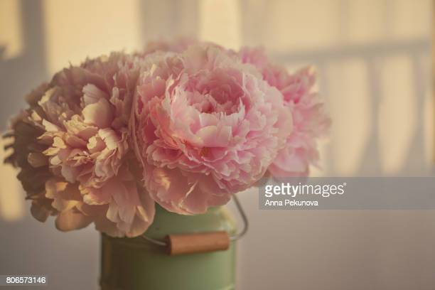 Peony flowers in a vase at sunset