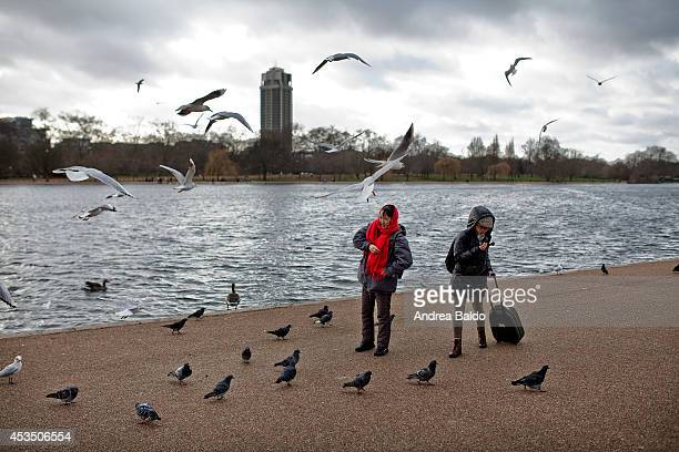 People are feeding animals in Hyde Park by the Serpentine lake