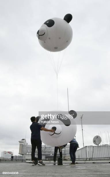 People are ready to lift pandafaced balloons into the air from a Tokyo department store roof on June 13 a day after the 11yearold giant panda Shin...