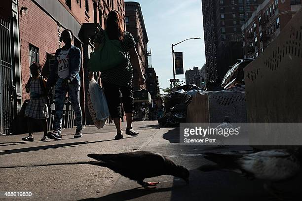 People are viewed in an area which has witnessed an explosion in the use of K2 or 'Spice' a synthetic marijuana drug in East Harlem on September 16...