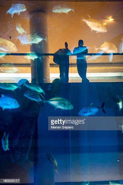 People at Dubai Mall Aquarium