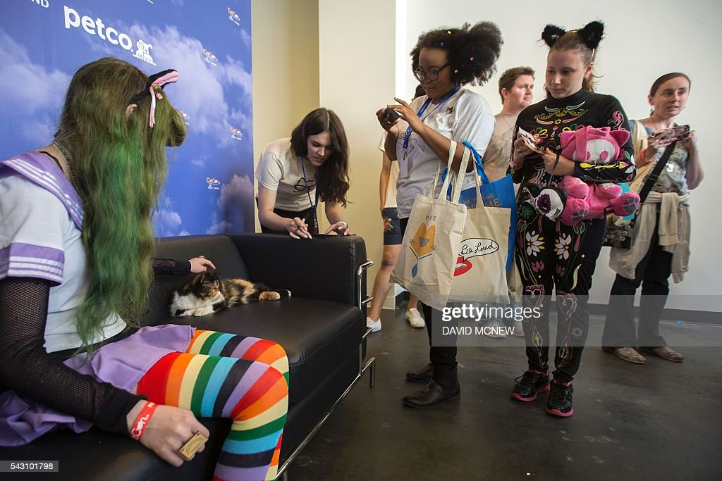 People attend a meet-and-greet event with the popular cat, Pudge, at CatConLA, a convention to show cat-related products and ideas in art, design, and pop culture, on June 25, 2016 in Los Angeles, California. / AFP / DAVID