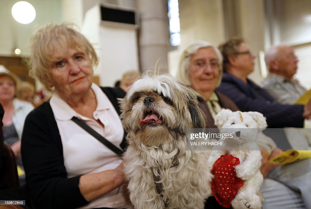 People attend with their dogs a mass dedicated to animals at the Saint-Pierre-d'Arene's church on October 7, 2012, in Nice southeastern France.