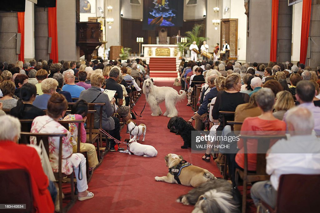 People attends with their dogs a mass dedicated to animals at the Saint-Pierre-d'Arene's church on October 6, 2013 in Nice, southeastern France. AFP PHOTO / VALERY HACHE