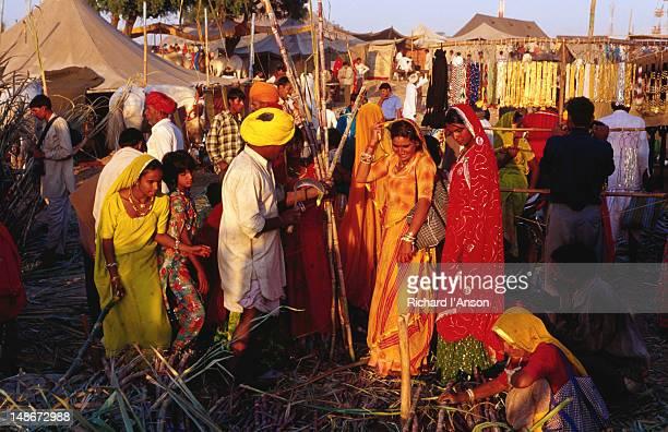 People buying sugar cane at Pushkar Mela.