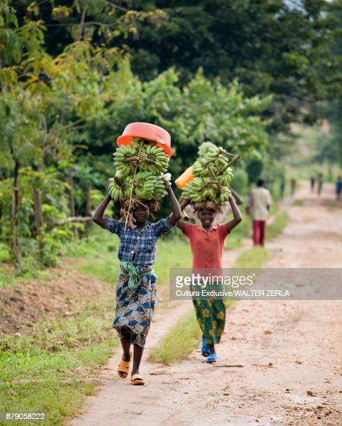 People carrying bananas on head, Masango, Cibitoke, Burundi, Africa