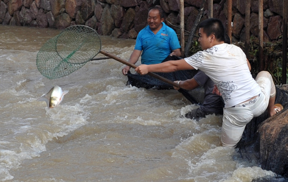 Jinhua zhejiang province stock photos and pictures getty for People catching fish