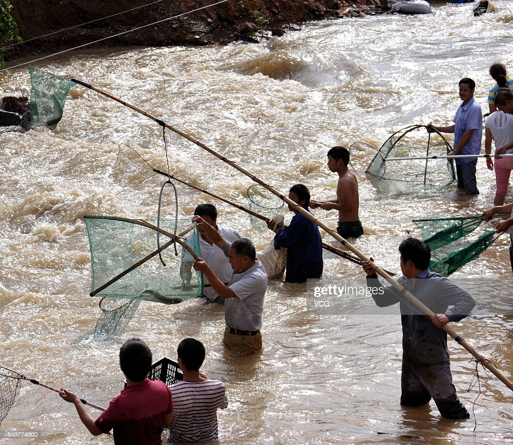 People catch fish at Huhaitang basin after heavy rain on June 30, 2016 in Jinhua, Zhejiang Province of China. Heavy rain hit southeast China's Jinhua City, bringing a number of fish from upstream and local citizens and nearby workers working on China National Highway 330 (G330) rushed to arrest fish in a basin.