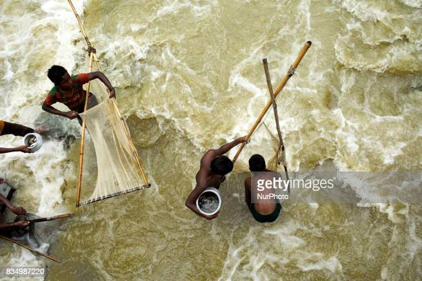 People catch fish with nets in a switch gate at Sariakandi Bogra Bangladesh 17 August 2017 According to authorities floods caused by heavy rainfall...