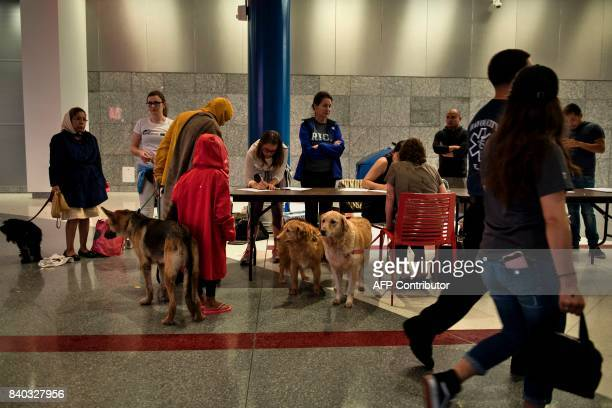 People check in with their pets to a shelter in the George R Brown Convention Center during the aftermath of Hurricane Harvey on August 28 2017 in...