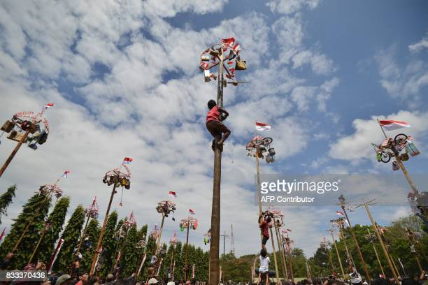 TOPSHOT People climb greased poles on which prizes and flags are attached to celebrate Indonesia's Independence Day in Denpasar on the Indonesian...