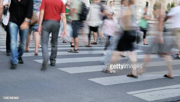 People Crossing the Street - Zebra Crosswalk