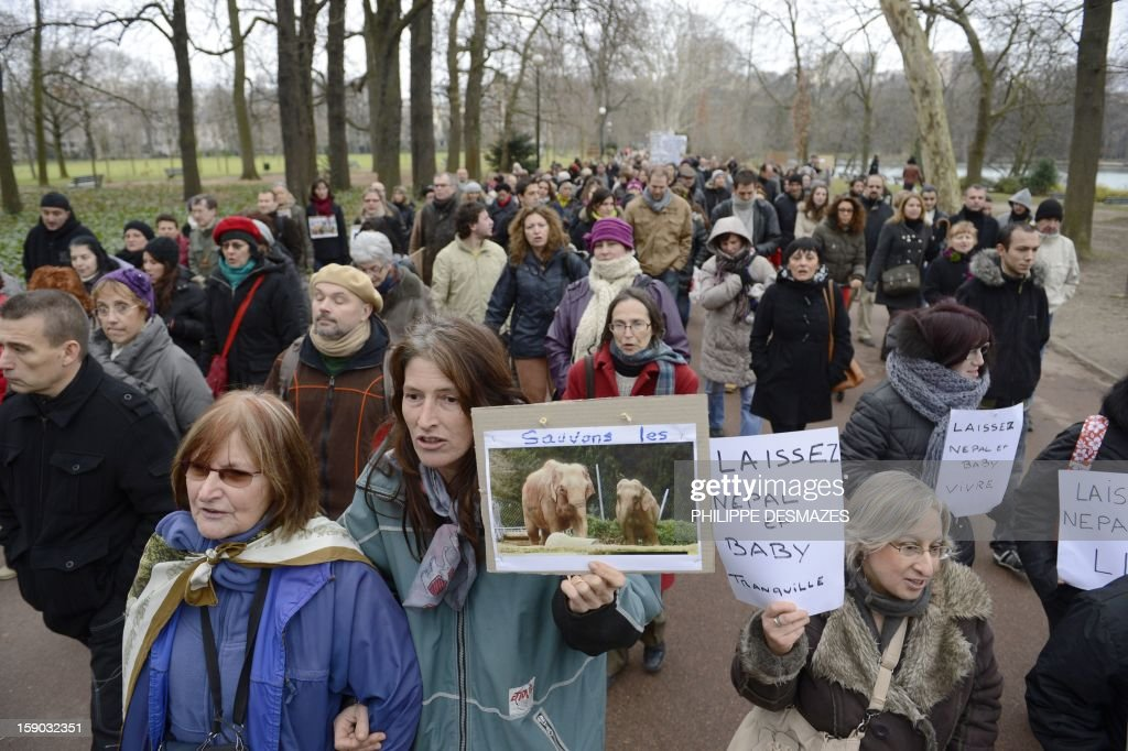 People demonstrate to save Baby and Nepal, two elephants suffering from tuberculosis on January 6, 2013 at the 'Parc de la Tête d'Or' Zoo in Lyon, central eastern France. The two ailing middle-aged elephants that French officials have wanted put down have been given a Christmas reprieve after an appeal to President Francois Hollande and an Internet campaign to save them.