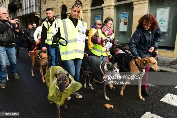 People demonstrate with dogs to defend animal rights during the first Animal's Pride on November 5 2017 in Bordeaux southwestern France / AFP PHOTO /...