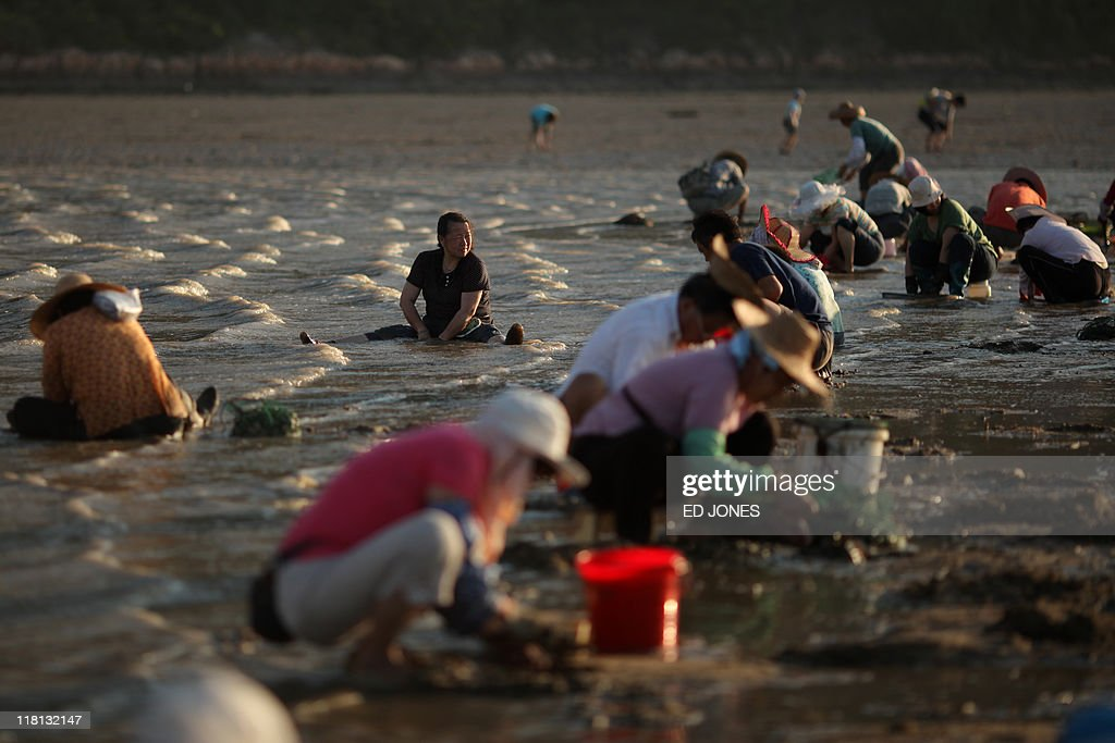 People dig for clams at low tide on Lantau island, Hong Kong on July 3, 2011. Whether for business or pleasure, the tradition of digging for clams is a regular draw for residents of Hong Kong's outlying islands. Bounty hunters prepared to spend hours hunched over barnacled rocks can expect a sure reward for their currency of clams from the ever-present nearby seafood establisments only too happy to serve up a hard-won catch.