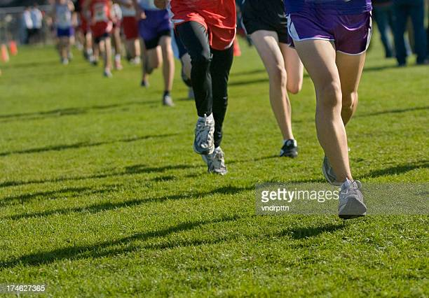 People doing cross country running on grass