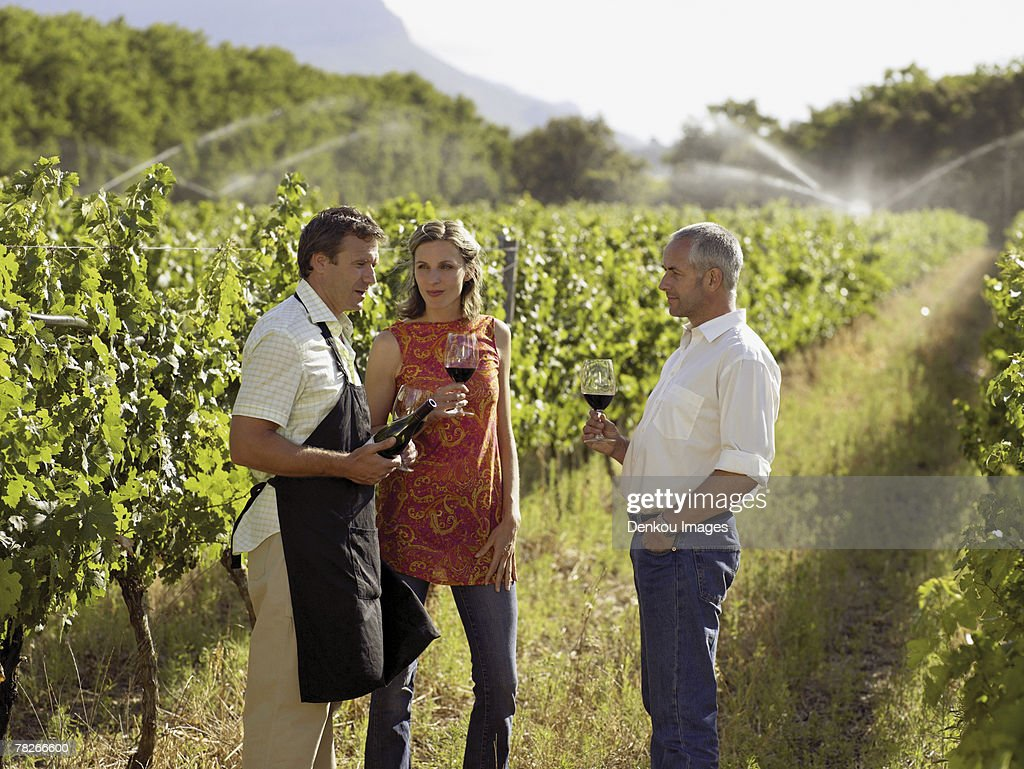 People drinking wine at a vineyard.