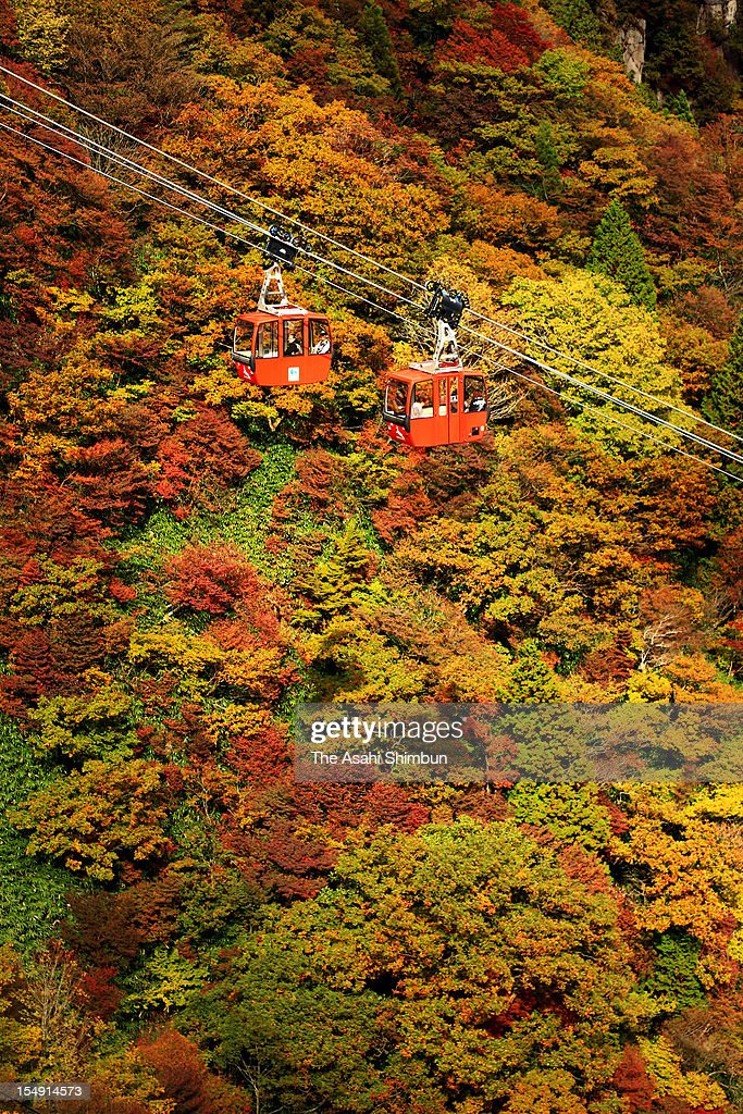 People enjoy autumn colours from a cable car at Gozaishodake on October 24, 2012 in Komono, Mie, Japan.