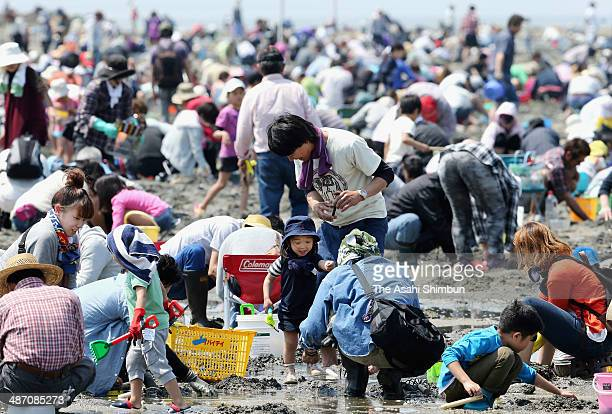 People enjoy clam digging at Takeshima beach on April 27 2014 in Gamagori Aichi Japan The holiday weeks called 'Golden Week' begins in Japan
